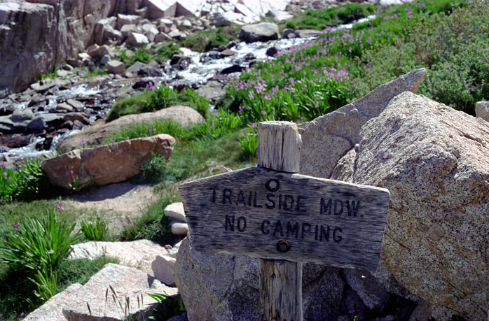 Mount Whitney Trailside Meadow Day Hike