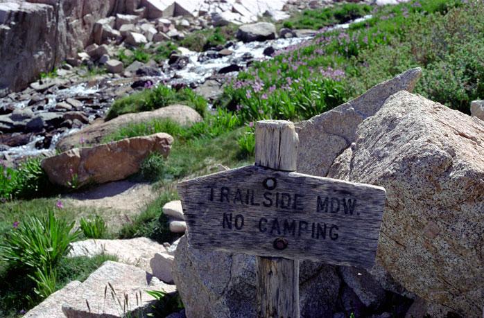Mount Whitney Trailside Meadow Day Hike